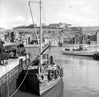 Whitby, Fishing